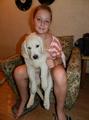 Продаю щенков Золотистого Ретривера с отличной родословной.